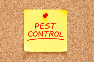 pest-control-sticky-note
